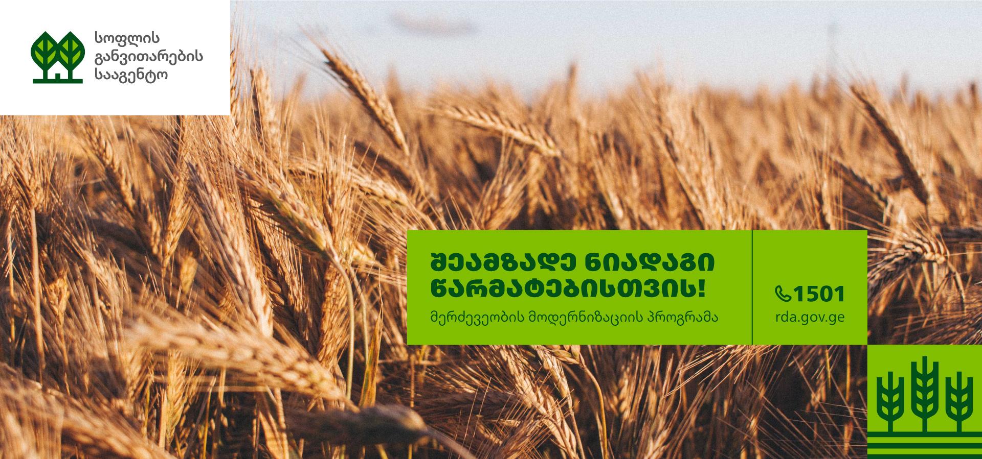 RDA-Billboard-Wheat-1920-q80-01